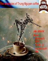 Chiến lược marketing mix của cà phê trung nguyên