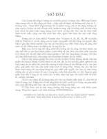 NGHIÊN CỨU MỐI QUAN HỆ GIỮA TEAFLAVIN VÀ TEARUBIGIN TRONG CHÈ ĐEN THEO PHƯƠNG PHÁP OTD ĐẾN CHẤT LƯỢNG CHÈ