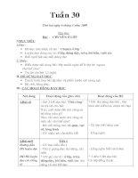 Giáo án lớp 1 - Tuần 30