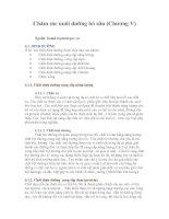 Chăm sóc nuôi dưỡng bò sữa (chương v)
