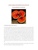 CÔNG NGHỆ NUÔI TRỒNG nấm LINH CHI (GANODERMA LUCIDUM)