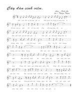 Bài hát cây đàn sinh viên - quốc an (lời bài hát có nốt)