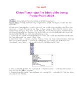 Huong dan chen Flash vao PP.doc