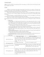 Tài liệu ôn tập kiểm toán nghiệp vụ