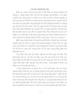CÁC GIẢI PHÁP NÂNG CAO NĂNG LỰC CẠNH TRANH CỦA NGÀNH THÉP VIỆT NAM27