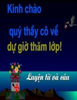 LTVC: Tổng kết vốn từ