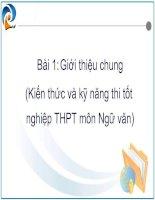 Giới thiệu kĩ năng làm bài văn thi TN