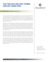 Vai trò của việc học trong gắn kết nhân viên - Dale Carnegie