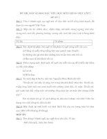 Đề thi, đáp án HSG Tiếng Việt 5 (Đề số 2)