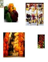 Sản phẩm sinh học đa dạng