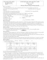 ĐỀ THI HỌC SINH GIỎI LỚP 11 THPT NĂM 2013 MÔN HÓA HỌC - SỞ GIÁO DỤC VÀ ĐÀO TẠO QUẢNG BÌNH