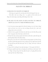Chuyên đề môn Toán: Nguyên tắc Dirichlet