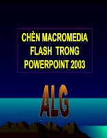 Chèn flash vào Powerpoint