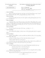 ĐỀ THI HỌC SINH GIỎI VÒNG TỈNH LỚP 9 THCS NĂM HỌC 2008-2009 MÔN SINH HỌC - SỞ GIÁO DỤC VÀ ĐÀO TẠO CÀ MAU