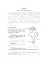 Giáo trình chăn nuôi trâu bò - chương 8