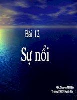 BAI TRINH CHIEU BÀI 12