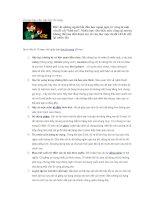 10 mẹo hay cho việc học từ vựng (P1)