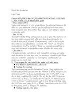 Chuyên đề 2 THỰC TRẠNG HOẠT ĐỘNG của NSNN VIỆT NAM