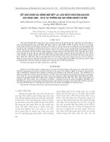kết quả CHọN TạO GIốNG NGÔ NếP LAI (Zea mays Ceratina Kalesh) GIAI ĐOạN 2005 - 2010 TạI TRƯờNG ĐạI HọC NÔNG NGHIệP Hà NộI