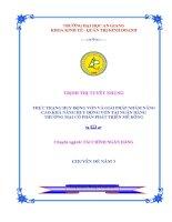 THỰC TRẠNG HUY ĐỘNG vốn và GIẢI PHÁP NHẰM NÂNG CAO KHẢ NĂNG HUY ĐỘNG vốn tại NGÂN HÀNG THƯƠNG mại cổ PHẦN PHÁT TRIỂN mê KÔNG