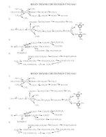chuỗi phản ứng hóa hữu cơ 11