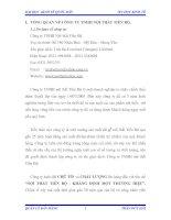 KHẢO SÁT VÀ ĐÁNH GIÁ HỆ THỐNG QUẢN LÝ BÁN HÀNG HIỆN TẠI CỦA CÔNG TY