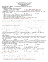 ĐỀ THI THỬ ĐẠI HỌC CAO ĐẲNG MÔN VẬT LÝ ĐỀ 8