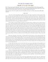 Ôn thi TN - Đề 2 (Lý luận văn học)