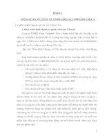 ĐẶC ĐIỂM VỀ QUẢN LÝ TÀI CHÍNH VÀ TỔ CHỨC KẾ TOÁN TẠI CÔNG TY TNHH NHỰA COMPOSIT VIỆT Á.