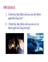 Bài giảng môn sinh học THCS :