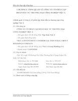 MỘT SỐ GIẢI PHÁP NHẰM NÂNG CAO HIỆU QUẢ HOẠT ĐỘNG CỦA CÔNG TY CỔ PHẦN TẬP ĐOÀN ĐẦU TƯ THƯƠNG MẠI CÔNG NGHIỆP VIỆT Á