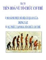 Bài 54: Tiến hóa về tổ chức cơ thể