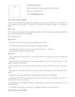 Mẫu hồ sơ dành cho sinh viên mới tốt nghiệp