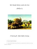 Kỹ thuật thâm canh cây lúa (phần 1)