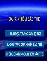 Bài 5 - Nhiem Sac The
