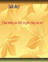 Tiet 37: Kieu o lau Ngung Bich