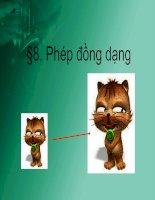 Bai 8 Phep dong dang