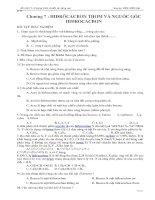TN HIDROCACBON THƠM-NGUỒN GỐC HIDROCACBON