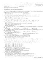 kiểm tra học kì I-SINH 12 CB và NC
