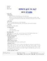 Bài 32 Các loại hoa