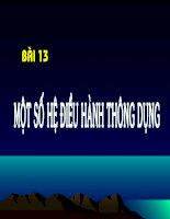 Bài 13 - tinhọc 10