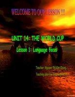 UNIT 14-LANGUAGE FOCUS-10