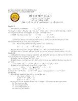 đề thi HSG cấp trường lớp 11 năm 2008-2009