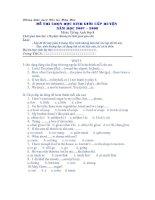 Đề thi chọn HS giỏi 8- Test 5