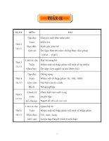 GIÁO ÁN LỚP 5 - TUẦN 11