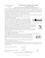 Đề HSG lý 10 THPT Tĩnh Gia 2 (06 - 07) + đáp án
