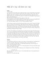 Một số ví dụ viết đơn xin việc
