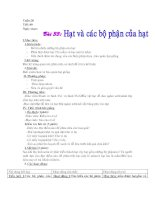 Bài 33 Hạt và các bộ phân của hạt
