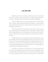 MỘT SỐ GIẢI PHÁP CHỦ YẾU ĐỂ ĐẨY MẠNH XUẤT KHẨU HÀNG DỆT MAY VIỆT NAM VÀO CÁC THỊ TRƯỜNG PHI HẠN NGẠCH