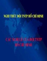Nghi thức ĐỘi TNTPHCM